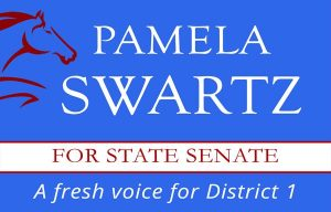 Pamela Swartz ~ A Fresh Voice for State Senate